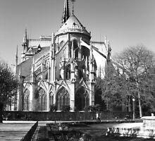Jardin de Notre Dame, Paris by maddie5