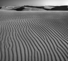 Waves of Sand by Cathy L. Gregg