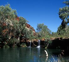 Fern Pool, Karijini National Park by bullfotos