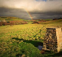 Leprechaun's House by Nigel Finn