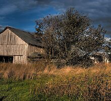 Barn at sunset  by Brad Denny Photography