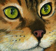 Butterscotch - Cat Portrait by LindaAppleArt