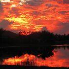 Sky on fire by ZSUZSA LADO