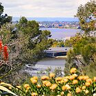 Flowery view of the Narrows by georgieboy98