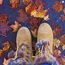 Fall At Last by kmdphotog