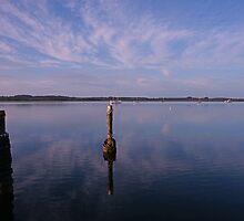 Pelican Lagoon Dawn by roger smith