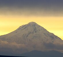Mount Hood by Susan Vinson