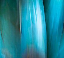 Bromeliad blues #01 by LouD