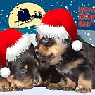 Puppy Christmas:I saw Mummy Kissing Santa Claus by taiche
