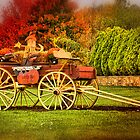 Celebrating Fall by Trudy Wilkerson
