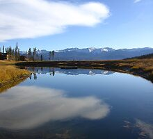 Morning Reflection, Crooked Creek Ranch, Winter Park, CO 2009 by J.D. Grubb