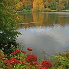 Autumn At Stourhead by RedHillDigital