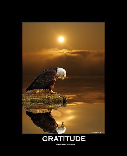"""Gratitude"" Bald Eagle by Skye Ryan-Evans"