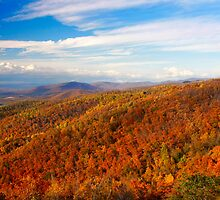 Shenandoah on my mind.. by Deb Snelson