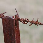 Red Rusty Star Picket and Barbed Wire - Maraylya by shmoo