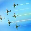 Roulettes by Darren Greenwell