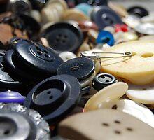 I Spy a Safety Pin by Christina Lancaster