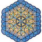 Mandala :   Life's Fruit   by danita clark