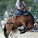 Rodeo Rider 1 by Kristine Kowitz