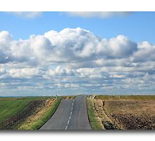 Danish landscape by John44