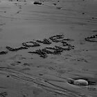 I Love You In The Sand by Atlantic Dreams
