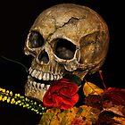 Happy halloween. by Finbarr Reilly