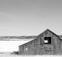 Blury Barn by Zaine D