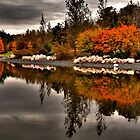 On Golden Pond by Larry Trupp