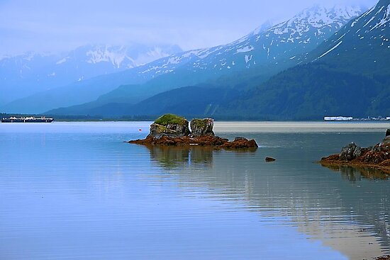 Prince William Sound by Vickie Emms