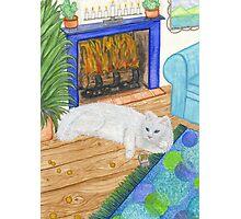 Kindle Cat Photographic Print