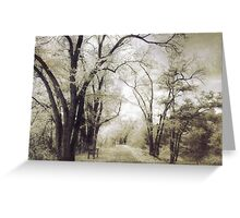 A Place For Dreams to Stay Forever Greeting Card