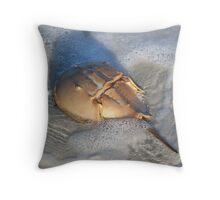 Horseshoe Crab Washing In Throw Pillow