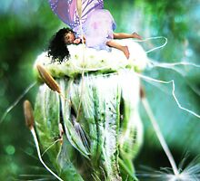 Spent by Tara Lemana