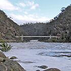 Cataract Gorge in Flood by Mishka Góra