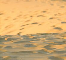 Currumbin Sand Dunes by James Torrington
