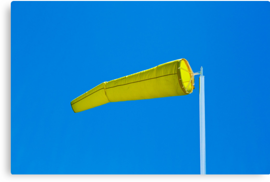 Sock It To Me Baby - Windsock, Palm Beach - Sydney - Australia by Bryan Freeman