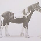 Working horse by Ed Teasdale