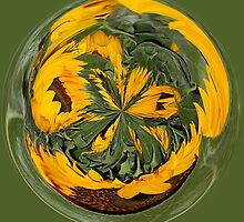 Orb, Sunflower by Jeanne Frasse