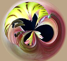 Orb, Flower  by Jeanne Frasse