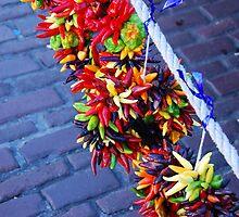 Chili's on a Rope by Jennifer Hulbert-Hortman