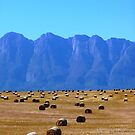 Haybales and mountains by fourthangel