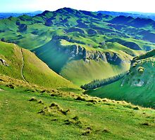 Rolling Hills of Grass. by Lynne Haselden