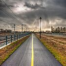 A Yellow Line on Pavement by Myron Watamaniuk