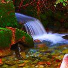 Small Waterfall by CDNPhoto