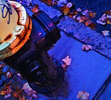 Hydrant, October Rain by Dave McBride