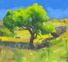 Near Lake Berryessa by John N.  Stewart