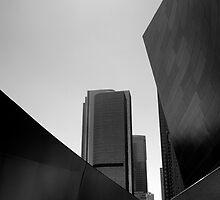 Walt Disney Concert Hall by dijle