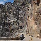 Motor Cyclist Heading to Kings Canyon  by dijle
