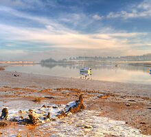 Winter morning at Kyson Point by Aidan Semmens