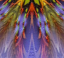 Phoenix Feathers 2000 by Hugh Fathers